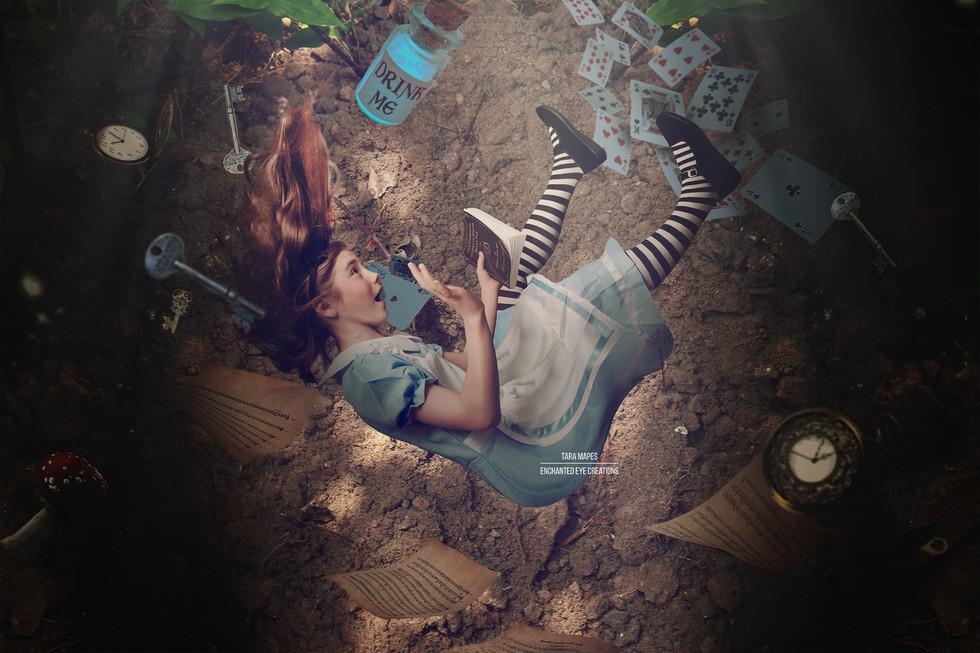 Alice Rabbit Hole p2