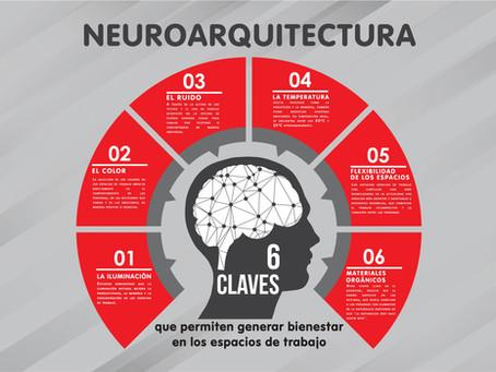 Neuroarquitectura: 6 claves que permiten generar bienestar en los espacios de trabajo
