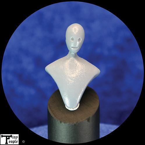 Bill   - bust blank for sculptors