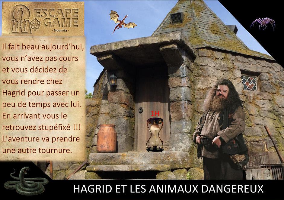 Hagrid et les animaux dangereux.jpg