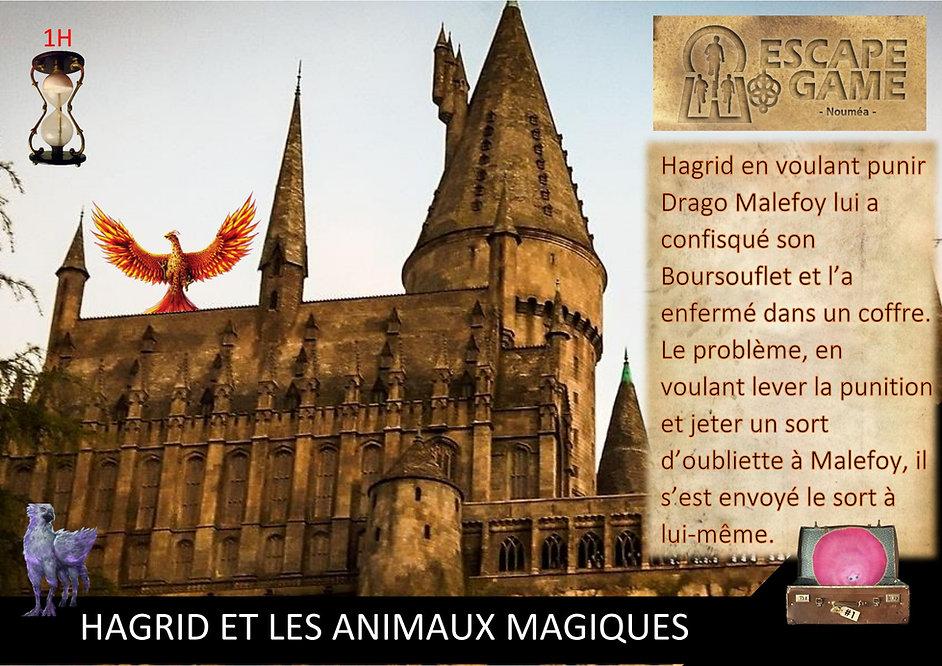 Hagrid et les animaux magiques.jpg