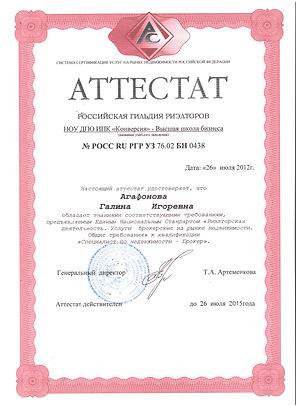 Сертификат_Гильдия.jpeg