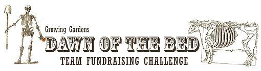 banner-team-fundraising-challenge.jpg