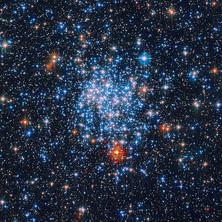 An Awake and Alive Universe