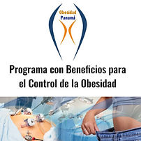 obesidad programa.jpg