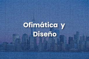 Ofimática y Diseño, MSN Training Books, Desarrollo Multimedia