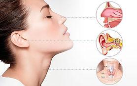 Otorrinolaringología, MSN Salud