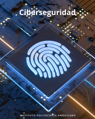 Ciberseguridad, MSN Training Books, Desarrollo Multimedia
