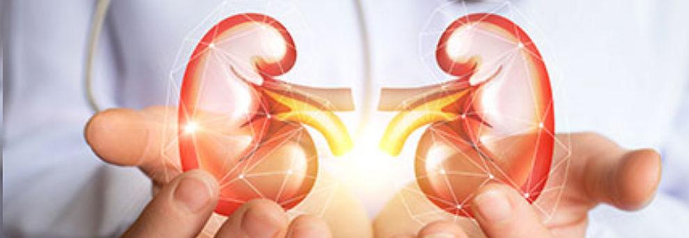 cabezal urologia.jpg