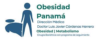logo obesidad horizontal.jpg