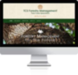 tab-bg-website-design.jpg