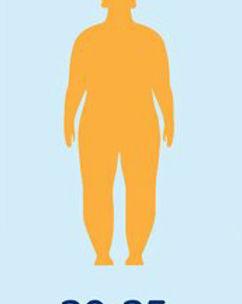 obesidad leve o grado 1.jpg