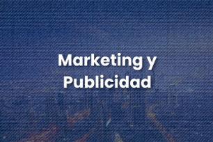Marketing y Publicidad, MSN Training Books, Desarrollo Multimedia
