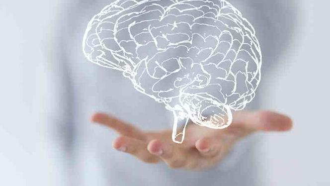 Curso-Neurofisiologia.jpg