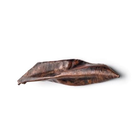 Callisto's leaf