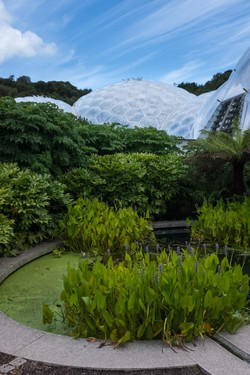 Domes of The Eden Project