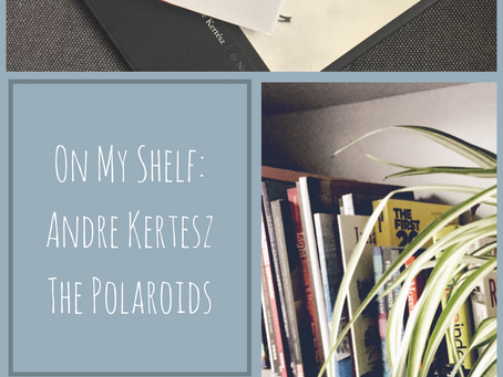 Andre Kertesz's Polaroids