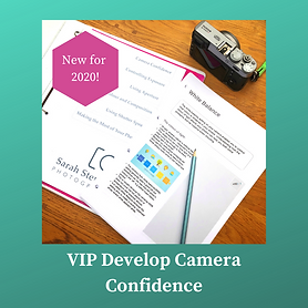 VIP Develop Camera Confidence.png