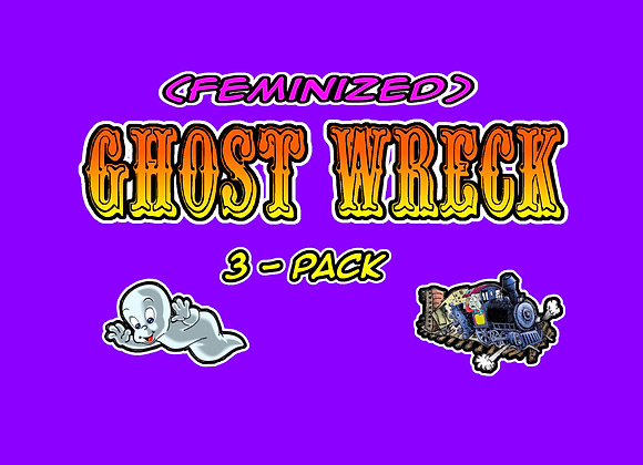 Ghost Wreck Feminized 3-Pack Collectables