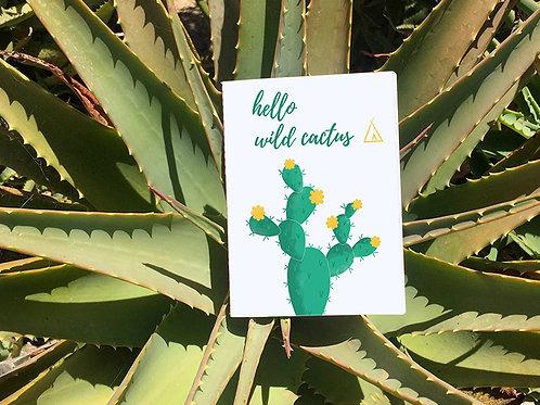 Petit Carnet Arizona | Prickly Pear