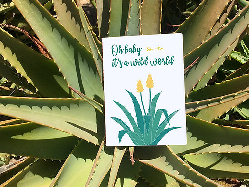 Petit Carnet Arizona | Agave