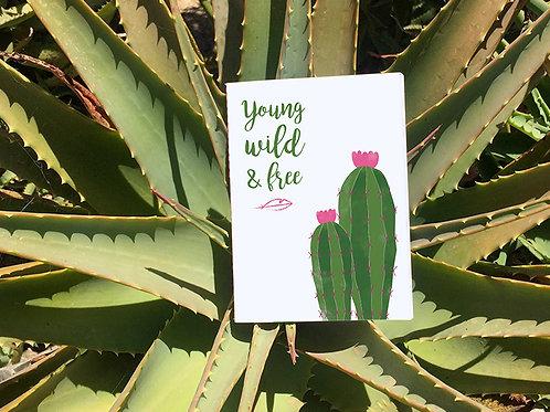 Petit Carnet Arizona | Ferocactus