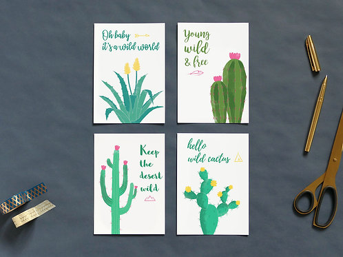Cartes postales | Set de 4 | Arizona