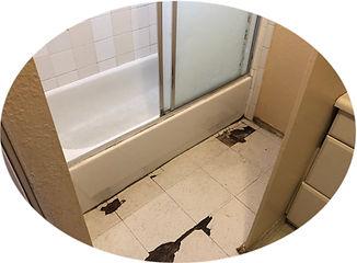 girlsbathroom.jpg