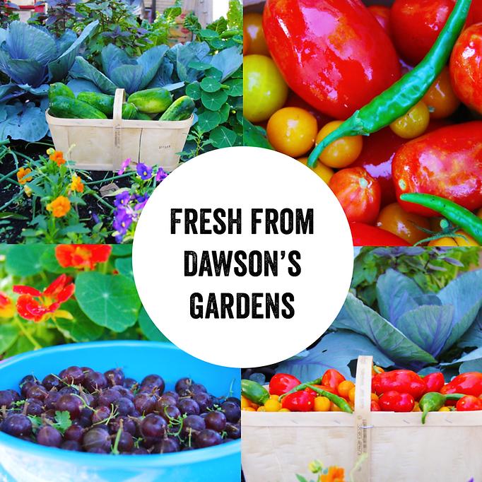 Rooftop Garden Harvest.png