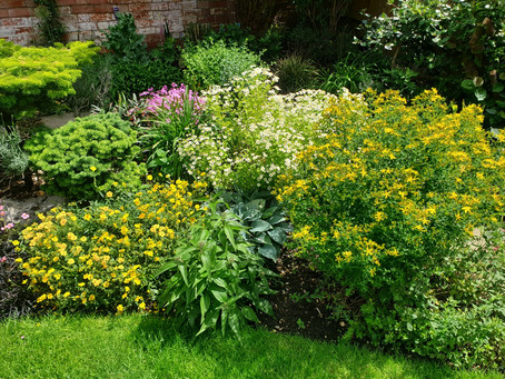 Beautiful garden to work in