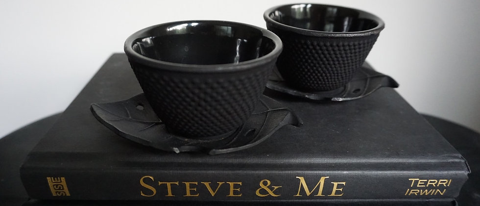 Cast Iron Teacup and Saucer