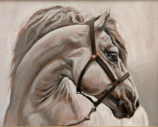 """""""Horse Portrait #1"""""""