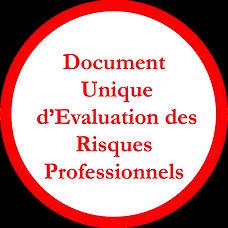 DUERP Logo SS FOND.jpg
