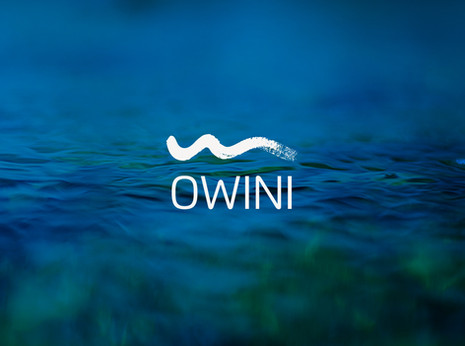 OWINI