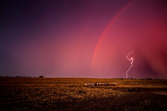 Wandoan Storm