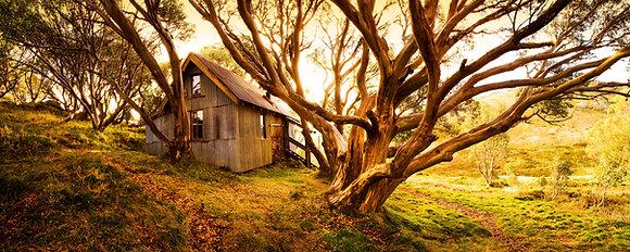 Cope's Hut