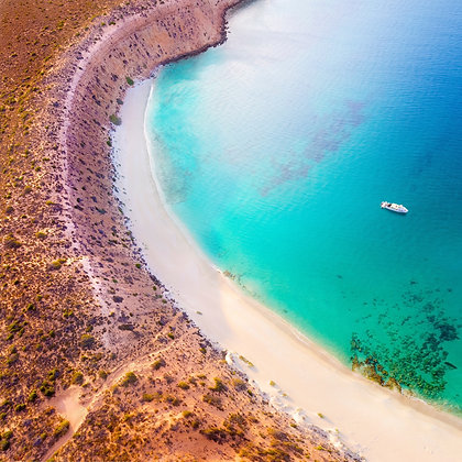 Turtle Bay #2