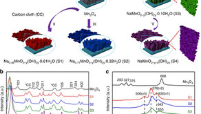 A monoclinic polymorph of sodium birnessite for ultrafast and ultrastable sodium ion storage