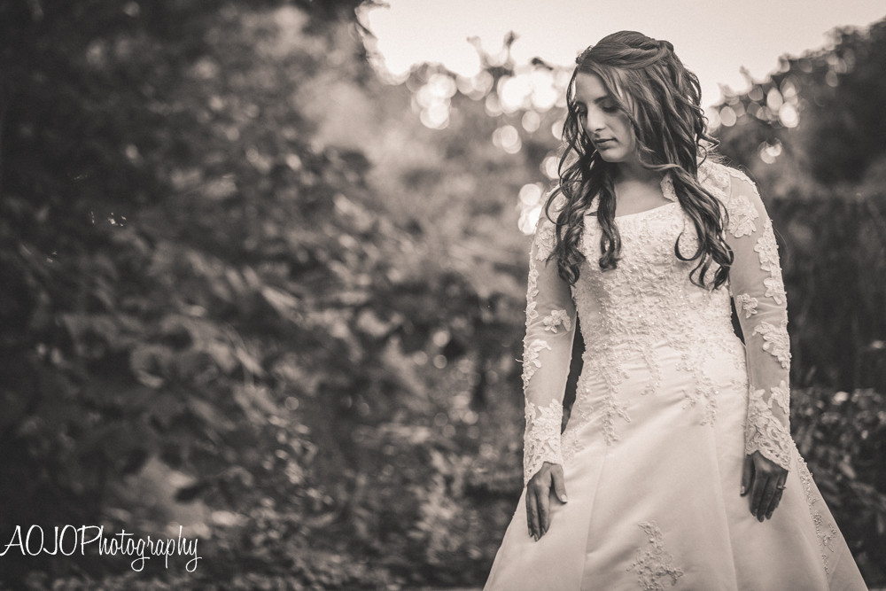 AOJOPhotography (Raleigh, NC Wedding Photographer)-3.jpg
