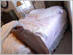 bedhead.jpg