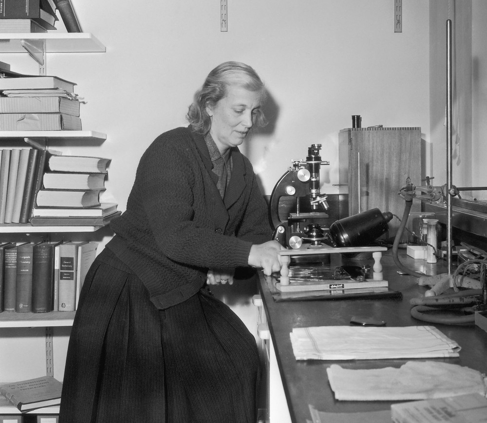 Black and white photo of Dorothy Hodgkin. She is a white woman with light colored hair. She is sitting in her laboratory front of a microscope.