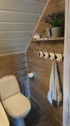 toilet with washbasin