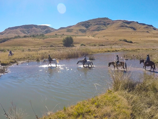 SEVEN DAY LESOTHO RIDE AND HORSE CLINICS