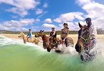 Rainbow-Beach-Horse-Rides.png
