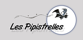 Logo ok Les Pipistrelles.PNG