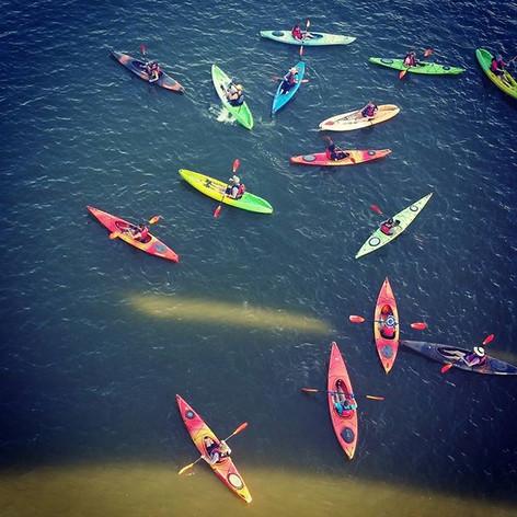 Kayaks on the Potomac
