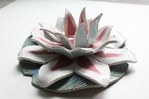 Ceramics: Lotus