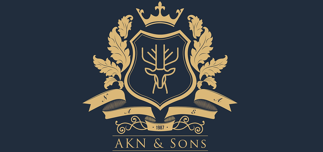AKN & Sons1.png