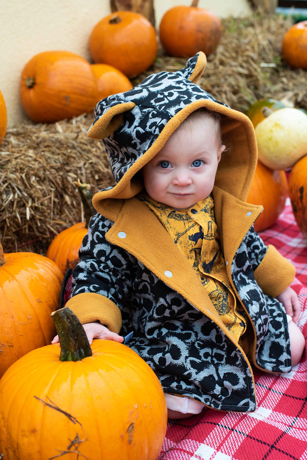 halloween baby photography