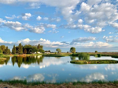Hightest Pond #3.JPG